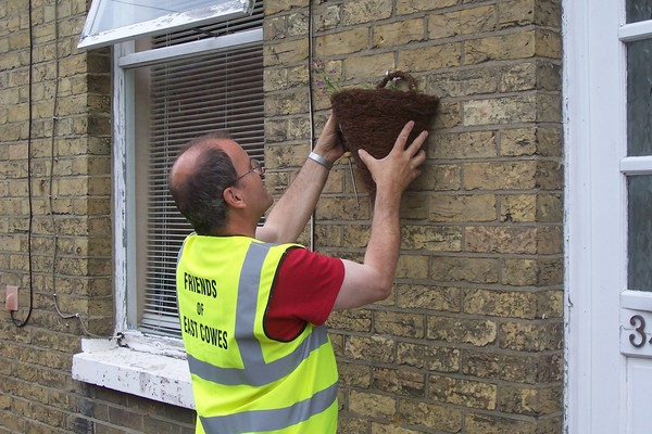 Fixing up a wall planter in Alfred Street.